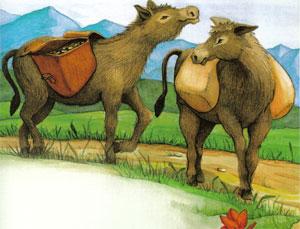 Animale Cei doi magari modul de viata si caracteristicile lui animal .com .ro