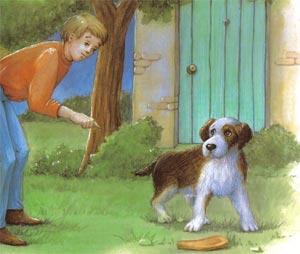 Animale Hotul si cainele modul de viata si caracteristicile lui animal .com .ro