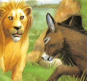 Animale Leul si magarul infumurat modul de viata si caracteristicile lui animal .com .ro