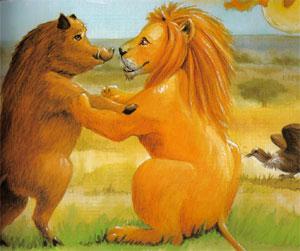 Animale Leul si mistretul modul de viata si caracteristicile lui animal .com .ro