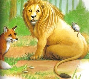 Animale Leul, vulpea si soarecele modul de viata si caracteristicile lui animal .com .ro