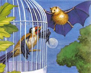 Animale Liliacul si sticletele modul de viata si caracteristicile lui animal .com .ro