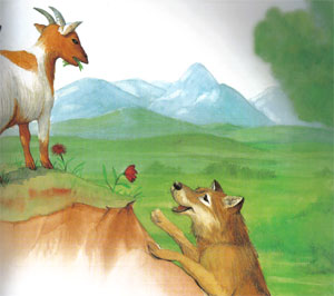 Animale Lupul si capra modul de viata si caracteristicile lui animal .com .ro