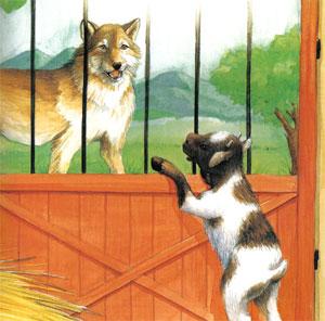 Animale Lupul si iedul din curte modul de viata si caracteristicile lui animal .com .ro