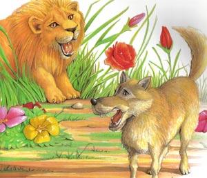 Animale Lupul cel mandru de umbra sa modul de viata si caracteristicile lui animal .com .ro