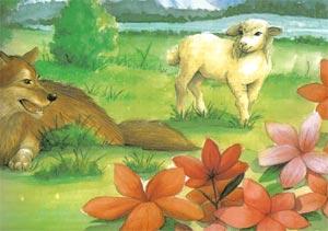 Animale Lupul ranit si oaia modul de viata si caracteristicile lui animal .com .ro