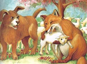 Animale Vulpea si cainele modul de viata si caracteristicile lui animal .com .ro