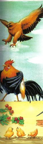 Animale Vulturul si cocosii modul de viata si caracteristicile lui animal .com .ro