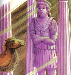 Animale Zeus si camila modul de viata si caracteristicile lui animal .com .ro